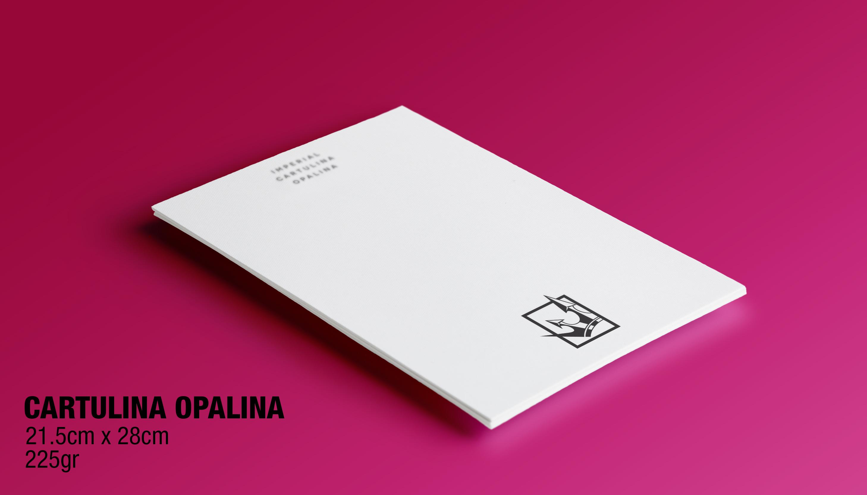 PAPEL Y CARTULINA OPALINA
